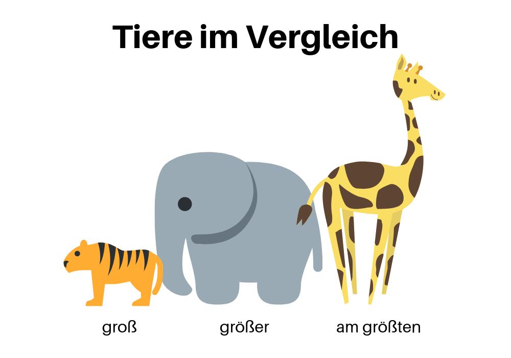 Tiere im Vergleich